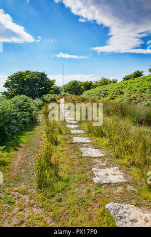 Granite slabs form a track on Bodmin Moor, all that remains of an old railway line, built in the 19th century to carry coal onto the moor, and copper  - Stock Image