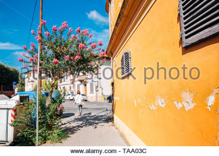 Pisa town at spring in Italy - Stock Image