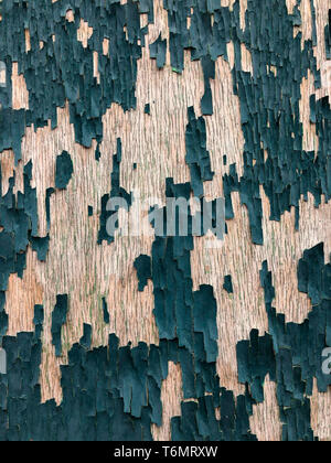 Background - Peeling paint on an old wooden door - Stock Image
