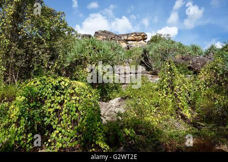 View of the rocky terrain near Mount Borradaile at Cooper Creek, West Arnhem Land, Northern Territory, Australia - Stock Image