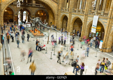 LONDON, UK - APRIL 28 2013: Visitors in the main entrance hall at London's  Natural History Museum. - Stock Image