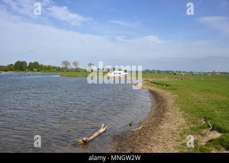 Boat beached on bank of River Thames, Port Meadow, Oxford - Stock Image