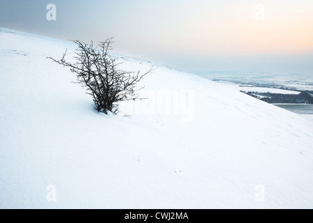 Dunstable Downs in Winter - Stock Image