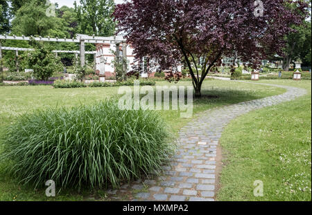 Palmengarten in May, a botanical garden located in Westend-Süd district, Frankfurt am Main, Hesse, Germany. - Stock Image