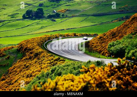 A9 main trunk road climbs 2 miles north of Helmsdale, Sutherland on Scotlands N.E. coast. Looking south over early - Stock Image