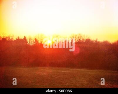 Sunset viewed from park - Stock Image