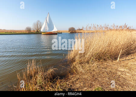 yacht sailing on the river thurne on the norfolk broads uk - Stock Image