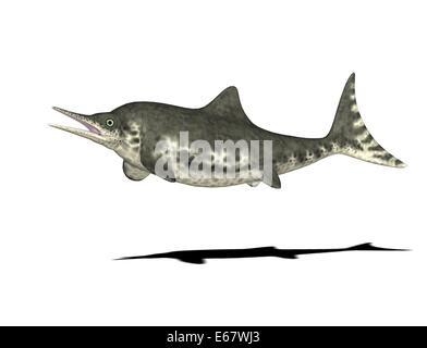 Dinosaurier Stenopterygius  / dinosaur Stenopterygius - Stock Image