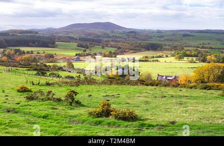 Rural farmland in Shropshire, England. - Stock Image