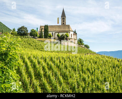 spring view of the Church of the idyllic village of Cortaccia ( Kurtatsch an der Weinstrasse ). Cortaccia extends on the sunny side of the wine road. - Stock Image