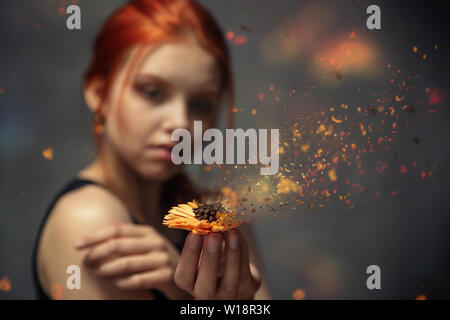 Flower crumbling in the hands of a red-haired young girl - Stock Image