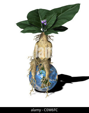 plant figure with globe - Stock Image