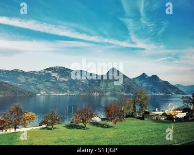 Field, trees, lake, mountain and sky scenery in Switzerland - Stock Image
