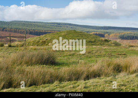 The burial mound Boncyn Arian or Brenig 45 at Llyn Brenig reservoir. Dated to 2000 - 1500 BC on the Denbigh moors part of the archaeological trail - Stock Image