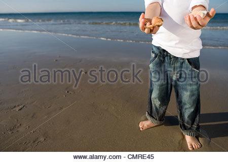 Boy holding seashells - Stock Image