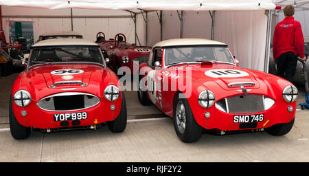 Front view of two 1959, Austin Healey 3000 Race Cars entered into the Gallet Trophy  for Classic GT Cars (pre 66') at the Silverstone Classic 2017 - Stock Image