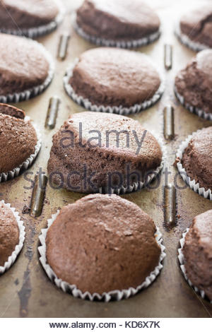 Closeup macro of fresh baked chocolate cup cakes in the baking tray. - Stock Image