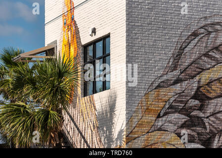 Coop 303 restaurant mural art at North Beaches Town Center in Atlantic Beach, Florida. (USA) - Stock Image