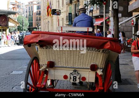 Stadtrundfahrt mit der Galera, einer Pferdekutsche, Mallorca. - Sightseeing tour by galera, a horse-drawn carriage, - Stock Image