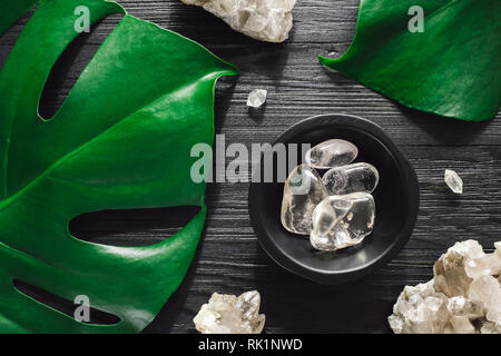 Clear Quartz with Smoky Quartz and Monstera on Black Wood - Stock Image