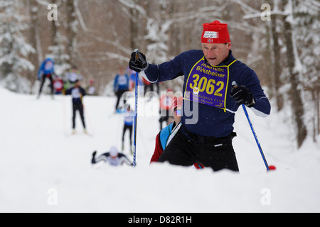 A competitor climbs a hill on the trail between Cable and Hayward, Wisconsin during the American Birkebeiner cross - Stock Image
