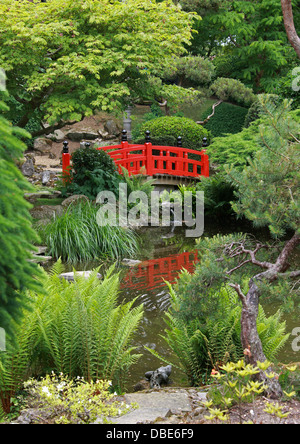 Red Wooden Bridge, The Japanese Garden, Cottered, Hertfordshire. - Stock Image