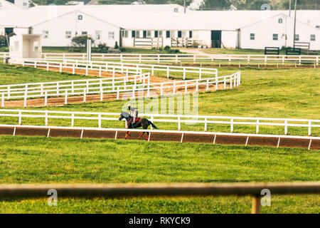 Jockey riding a race horse during workouts on a practice dirt track on a farm in Lexington in Kentucky. - Stock Image