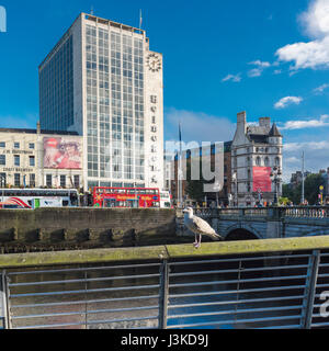 A seagull sits on a railing besde the River Liffey near O'Connell Bridge, Dublin, Ireland, with O'Connell - Stock Image