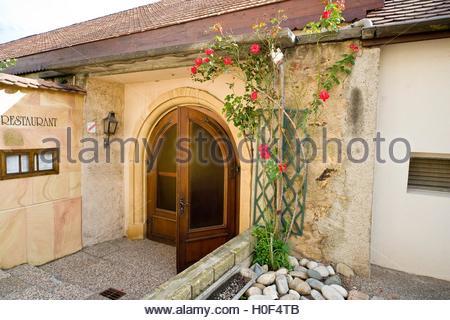 BLWX108361 [ (c) blickwinkel/McPHOTOx/PhotoPoster Tel. +49 (0)2302-2793220, E-mail: info@blickwinkel.de, Internet: - Stock Image
