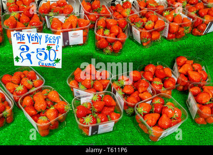 Ripe Belgian grown Strawberries labeled 'The Very Best' on display on a greengrocer's market stall priced at £2.50 per pound in spring in Redcar Engla - Stock Image