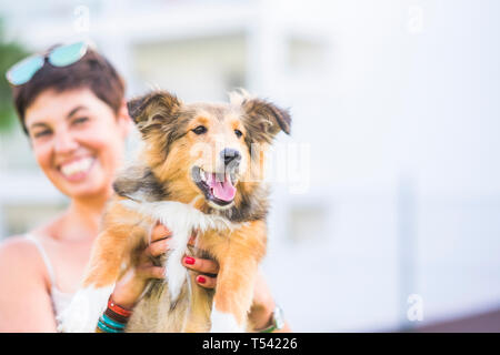 Cheerful young lady showing her puppy purebred shetland dog - love for humans and an9mals concept with pet therapy - defocused background and focus on - Stock Image
