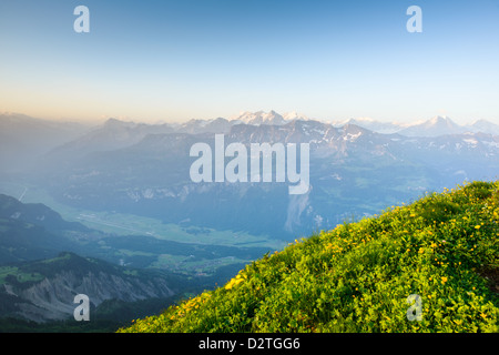 Mountain panorama from Brienzer Rothorn with green meadow and blue sky - Stock Image