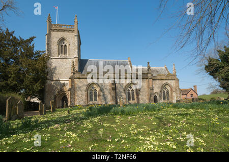 St James church in East Tisted, Hampshire, UK, during spring with lots of primroses growing in the churchyard - Stock Image