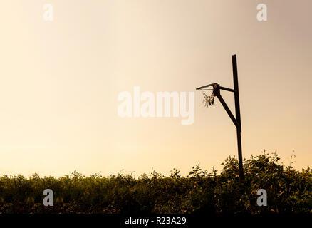 Silhouette Of Basketball Rim - Stock Image