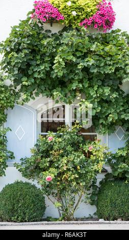 Romantic Window - Stock Image