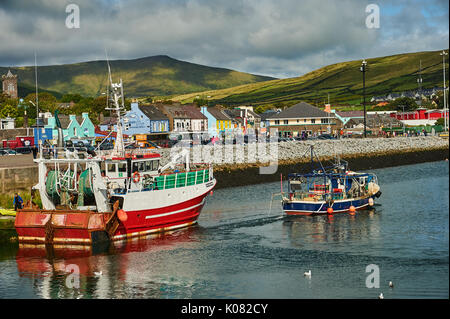 Dingle, County Kerry in the Republic of Ireland and a collection of fishing boats are moored in the small working harbour. - Stock Image