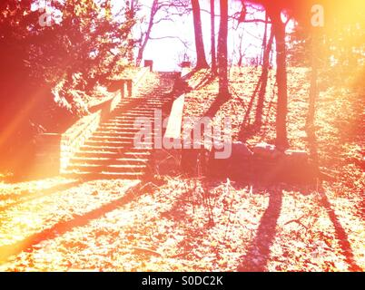 Staircase in park - Stock Image