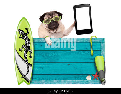pug dog on vacation with blue vintage wooden beach sign, surfboard and mobile phone / tablet, isolated on white - Stock Image