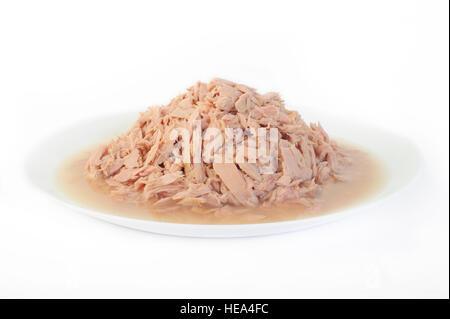 tuna fish canned - Stock Image