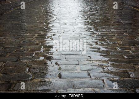 Granite cobblestones on a wet day - Stock Image