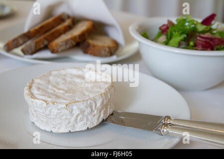 Soft creamy French Camembert cheese - Stock Image