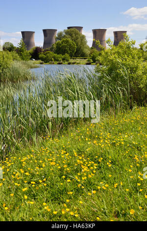 The big five cooling towers at Willington Power Station seen across the newly constructed wildlife ponds close to - Stock Image
