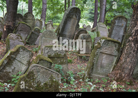 Tombstones dating back to the sixteenth century one of Poland's oldest, Kirkut, Jewish cemeteries Lesko Bieszczady Poland - Stock Image
