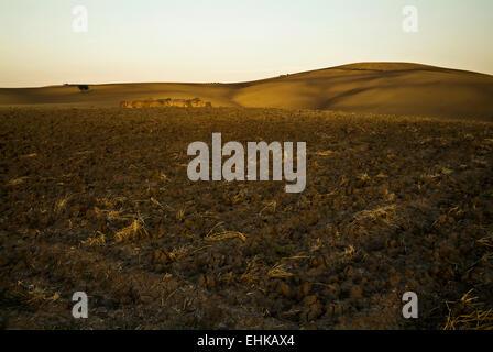 Plowed fields in Apulia, Italy - Stock Image