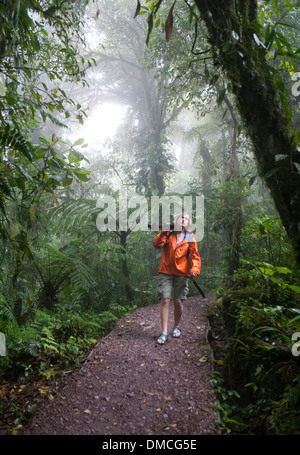 Hiker in the Monteverde Cloud forest of Costa Rica. - Stock Image