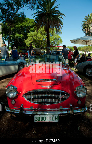 Classic red Austin-Healey 3000 - Stock Image