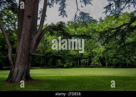 Garden Chenonceau Castle Loire Valley France - Stock Image
