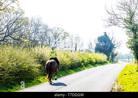 Horse and rider on road, riding horse on road, slow down for horses, horse riding on road, horse riding, road, roads, rider, riding, horses, rural, UK - Stock Image