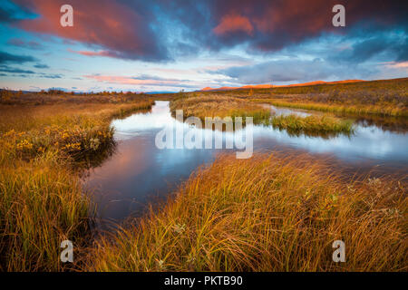 Beautiful autumn morning at Fokstumyra nature reserve, Dovre, Norway. - Stock Image