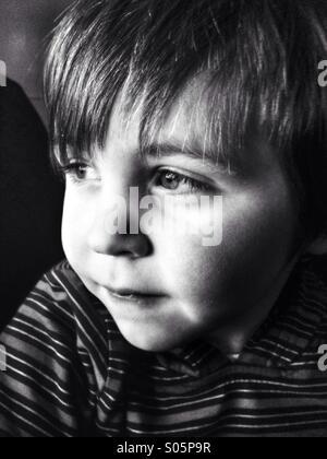 Young Caucasian toddler boy portrait. - Stock Image